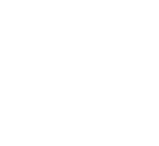 Cross the Line Foundation